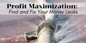 Profit Maximization - Find and Fix Your Money Leaks