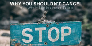 Before Canceling Your Whole Life Insurance Read Why You Shouldn't Cancel Your Whole Life Insurance